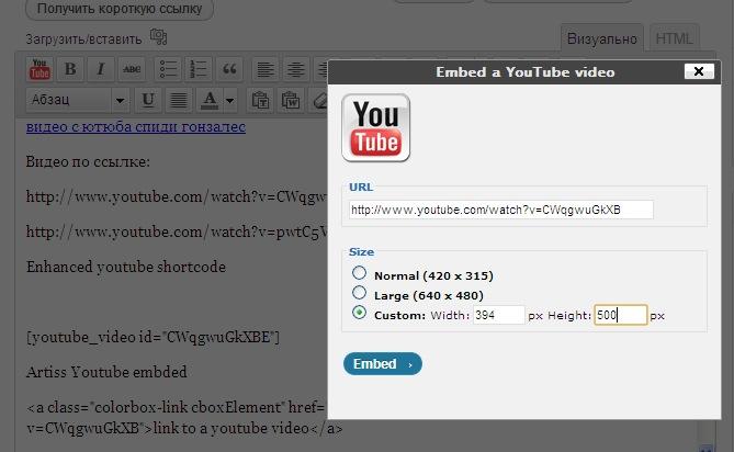 Вставляем видео с помощью плагина TinyMCE YouTube Embed