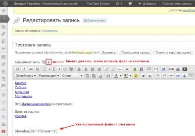 Вставляем файл со счетчиком с помощью плагина WordPress Download Monitor