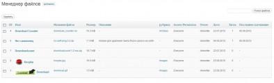 Статистика, выводимая плагином WP-Filebase Download Manager