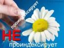 Индексация Яндексом сайта на Вордпресс