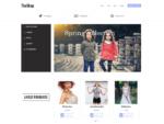 Обзор и настройка лучших бесплатных тем и шаблонов для WooCommerce (часть третья, шаблон TheShop)