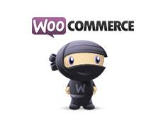 Интернет магазин на WordPress, или немного о 20 лучших бесплатных тем и шаблонов для WooCommerce