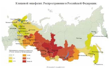 Карта эндемичных по энцефалиту регионов